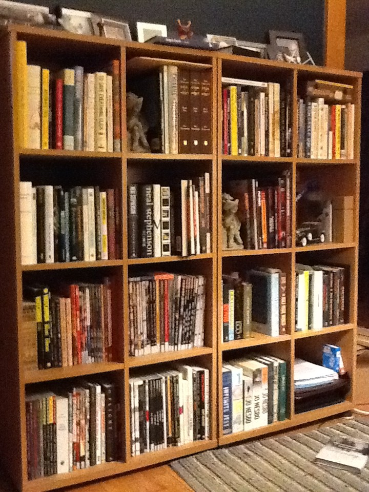 A Picture Of The Bookshelves In My Living Room